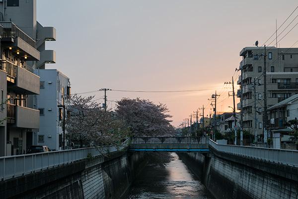 私的、住みたい街No.1・・・氷川台