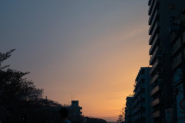 氷川台、石神井川沿い 夕暮れ