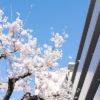 物件購入、転入から早4か月、このマンションの満足度を採点(1)