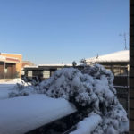 雪の一日、軽く北欧気分を味わう埼玉在住